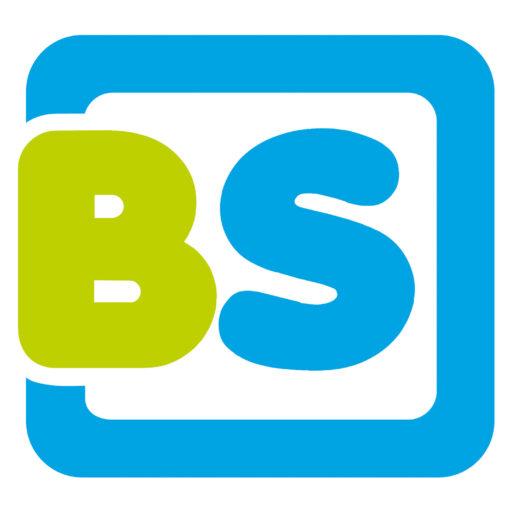 BS Toys